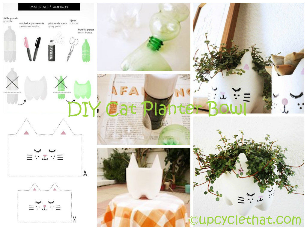 Cat Planter Bowl DIY TUtorial