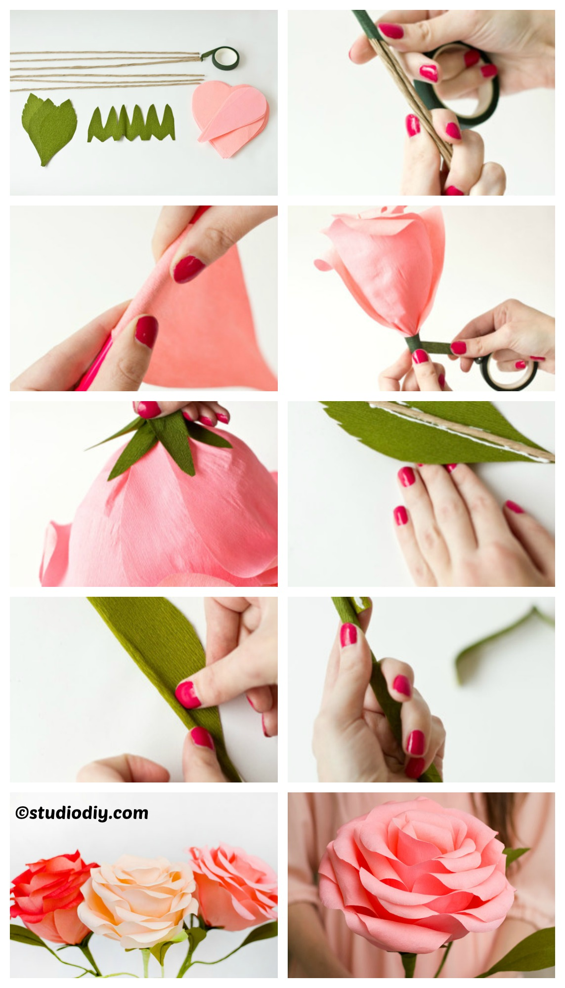 How to make Giant Crepe Paper Roses