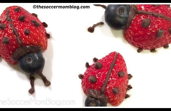 DIY Fruits Ladybug Tutorial