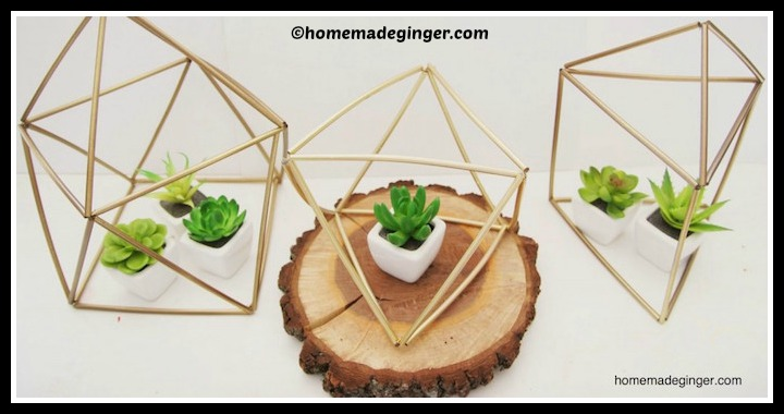 DIY Geometric Planters Tutorial