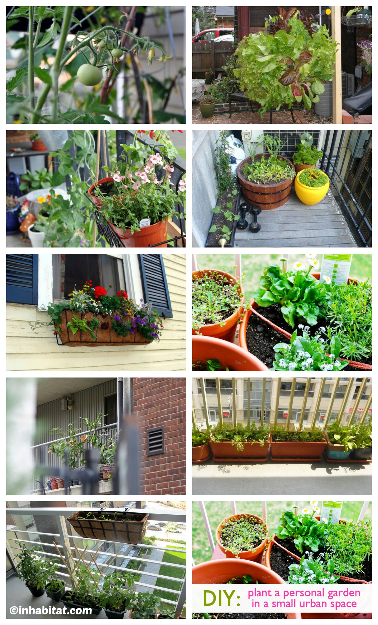 How to - Urban Garden Small Space