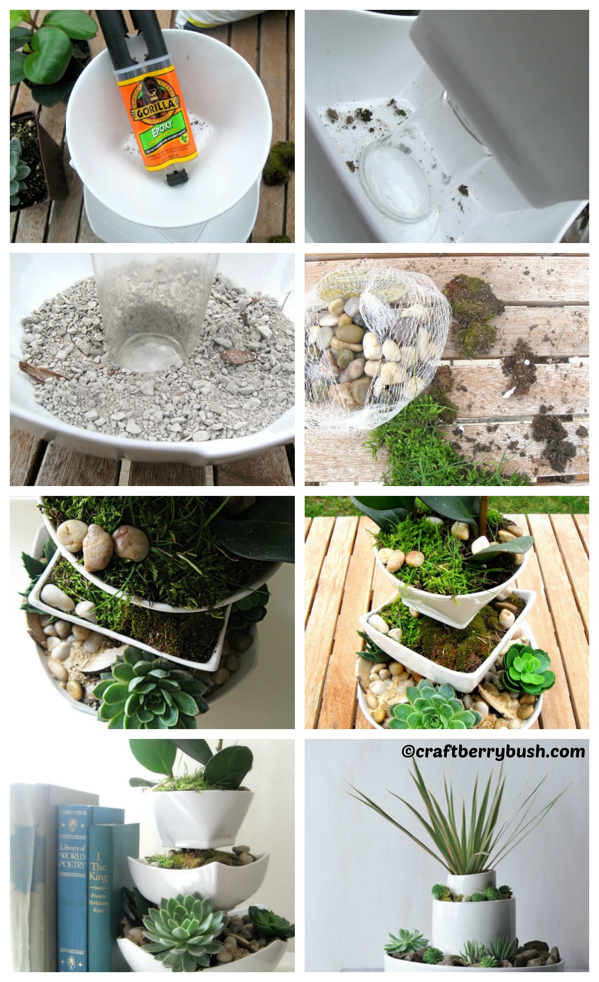 How to make a Fresh and Succulent Planter