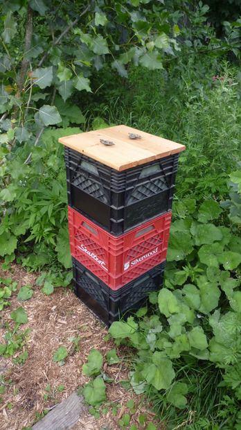 Compost Bins 6