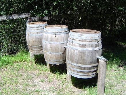 Compost Bins 9