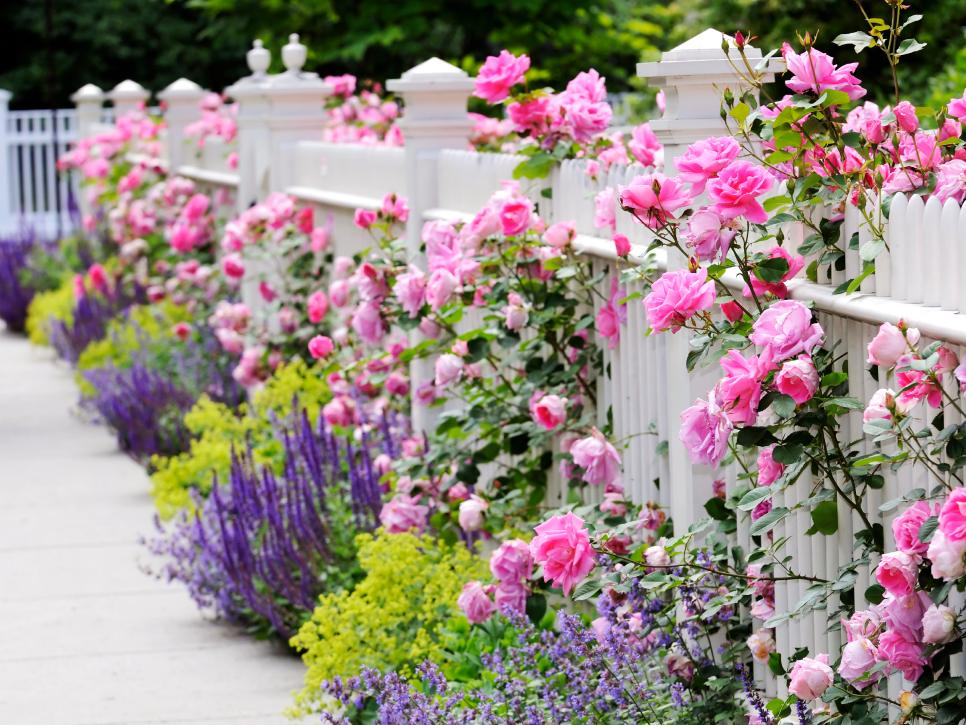 Enhance Your Home Curb Appeal 10