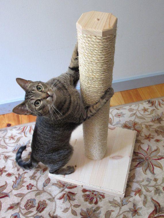 Cat Toy 9