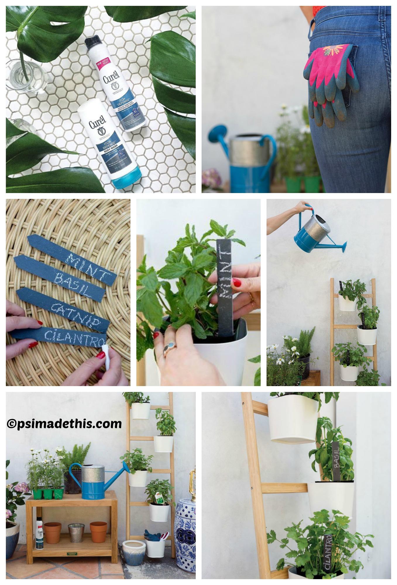 How to make a Vertical Ladder Herb Garden