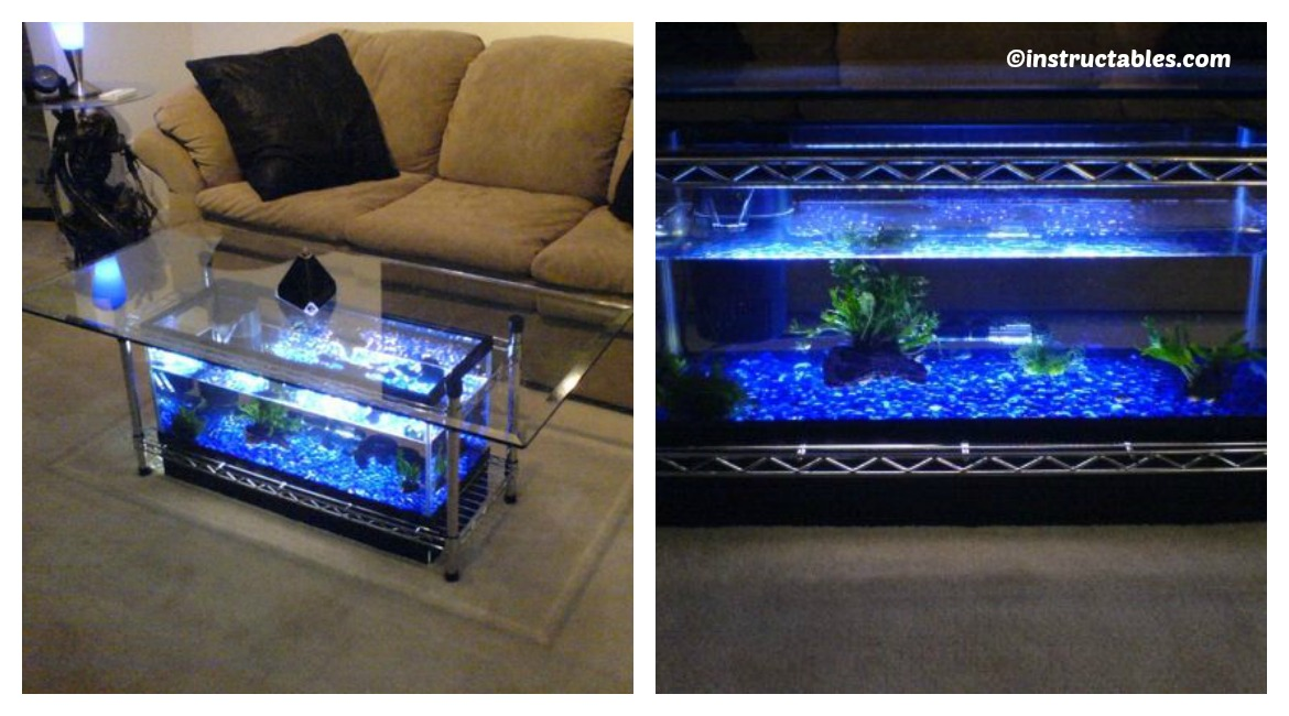 Aquarium coffee table diy tutorial diy home tutorials - Aquarium coffee table diy ...